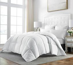 Beckham Hotel Collection Egyptian Quality Cotton Goose Down